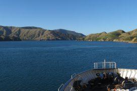 VLOG: Het Noordereiland van Nieuw Zeeland