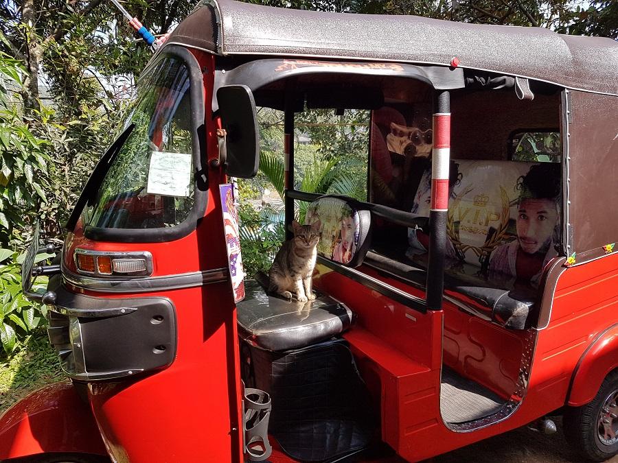 Binnenkant tuktuk